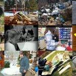 Výsledky súťaže LITTER LESS (Menej odpadu) – program Mladí reportéri pre životné prostredie