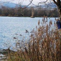 Dubnické štrkovisko – chránené vtáčie územie