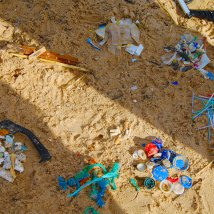 Na záver sa vyzbierané kúsky za pomoci aktivistov triedia do rôznych kategórií – ľahký/ťažký plas, papier, kusy nábytku a časti rybárskeho náčinia. Pochopiteľne sa medzi odpadom nachádza aj ten prírodný, ktorý životnému prostrediu nijako neškodí a môže na pláži naďalej zostať.